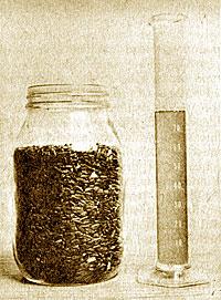 Sunflower Seed oilpress
